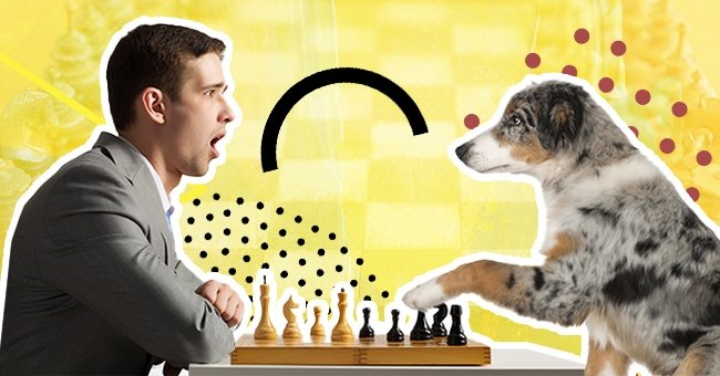 Daily Joke: Man Finds His Friend Playing Chess with His Dog