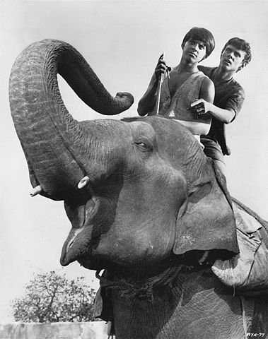 Jay North with Sajid Khan in Maya, 1967. | Source: Wikipedia.