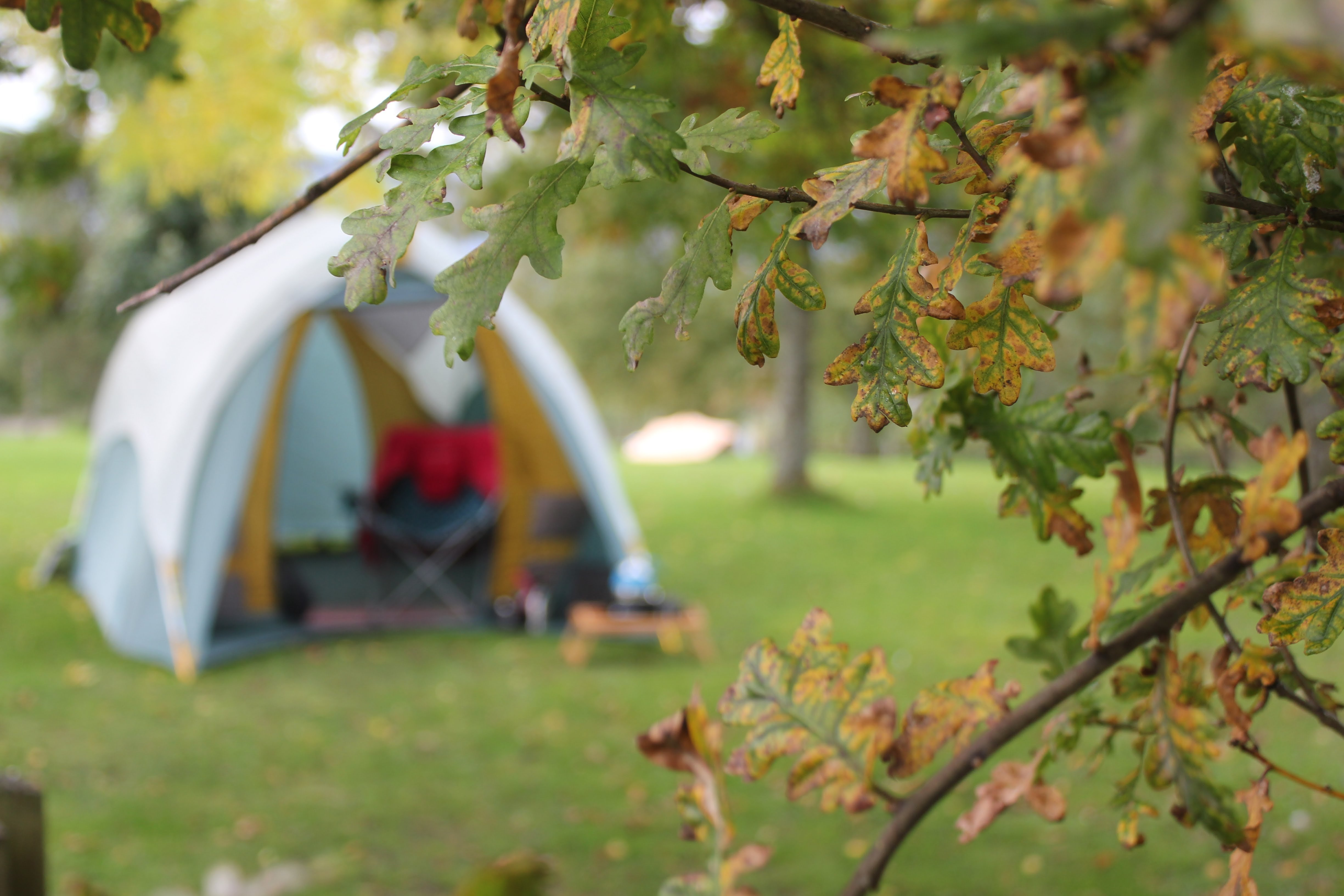 A blurred image of a tent on a field   Source: Unsplash