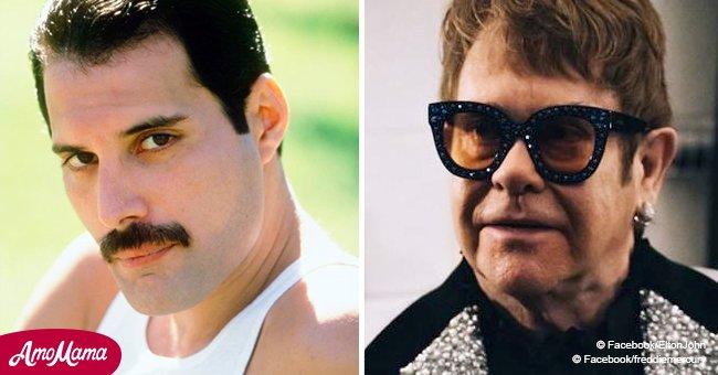 Elton John erzählte über die letzten Tage von Freddie Mercury
