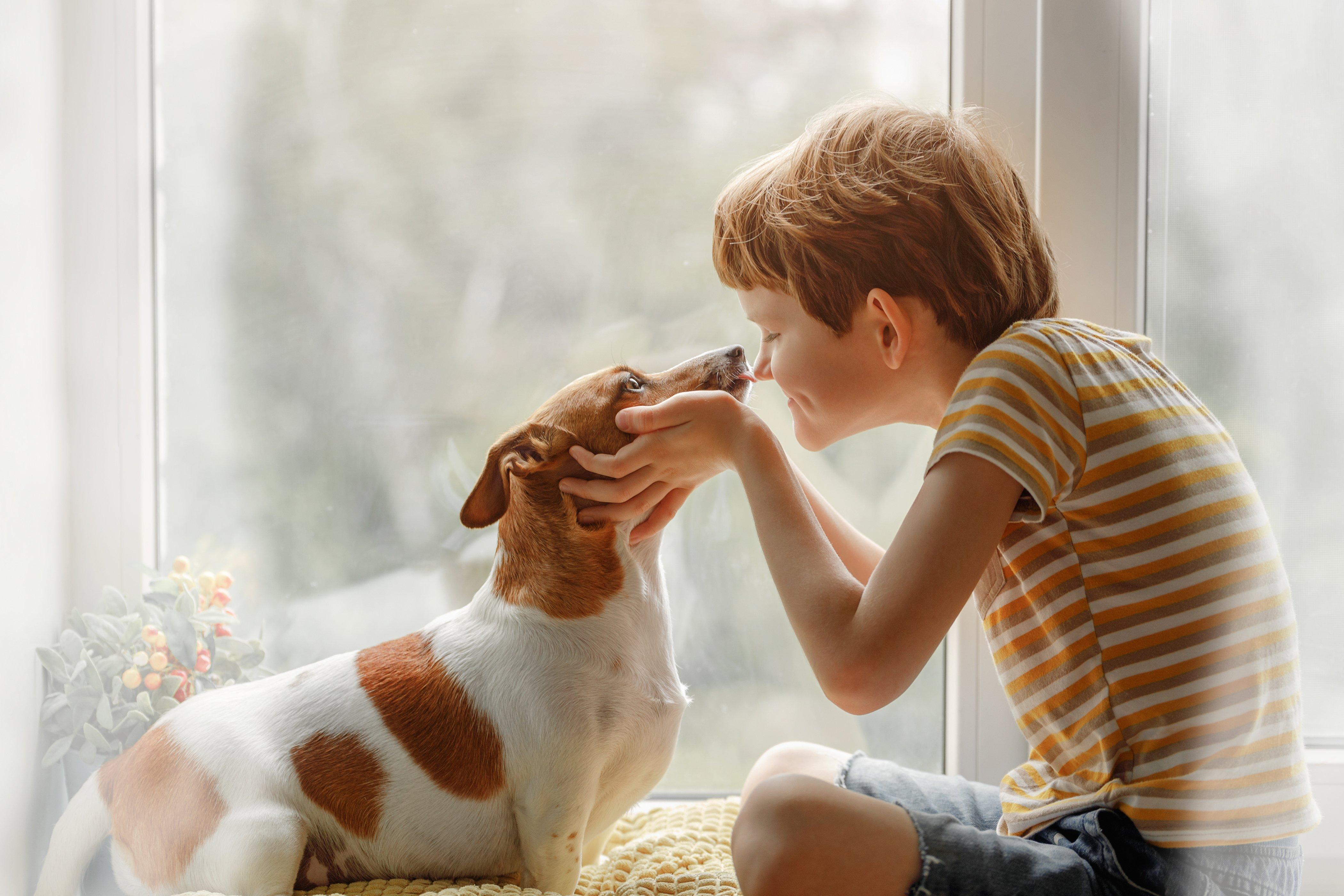 Niño besa a un perro. Fuente: Shutterstock
