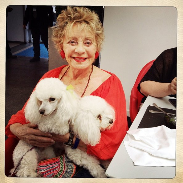 Celebrities at the 8th French Speaking Film Festival in Angouleme; The singer and actress Annie Cordy with her two dogs Fleecy and Fluffy in Angouleme on August 28, 2015. | photo : Getty Images)