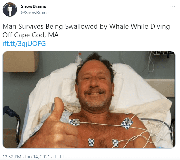 Michael Packard pictured in hospital after the accident. | Photo: Twitter/snowbrains