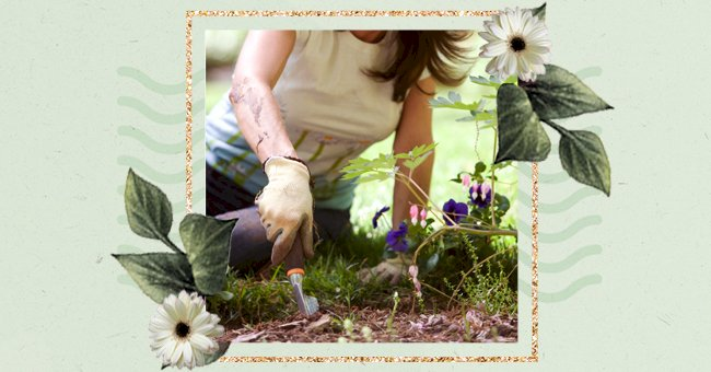 A Guide To Preparing Your Garden for the Summer