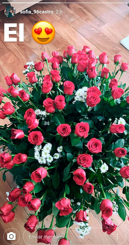 Rosas rojas | Foto: Instagram.com/stories/sofia_96castro/