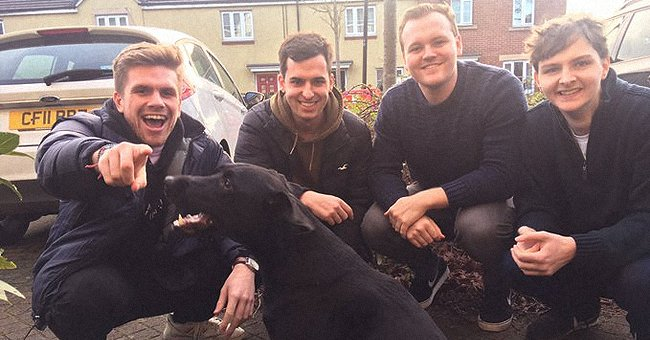 4 Men Asked If They Could Walk Their Neighbor's Dog – Check Out the Heartwarming Response They Received