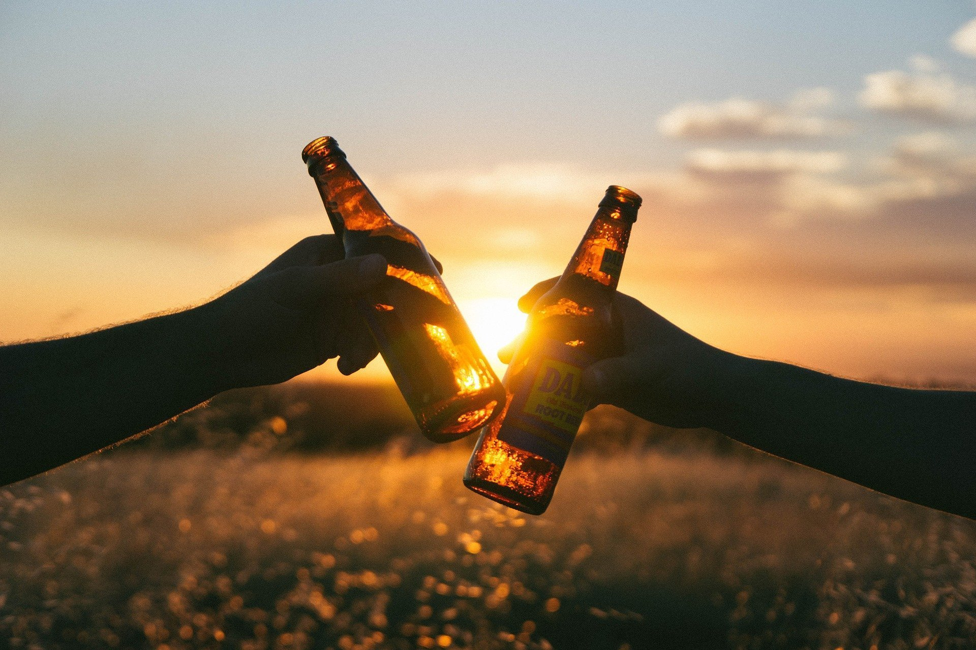 Clinking beer bottles with a sunset in the background. | Source: Pixabay