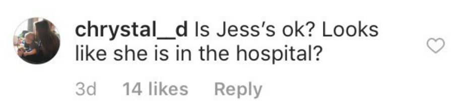 One fan's comment under the picture on Instagram | Instagram/seewaldfamily