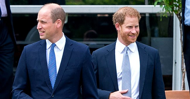 Daily Mail: Lip Reader Claims Prince Harry & Prince William Approached Unveiling Princess Diana Statue Differently