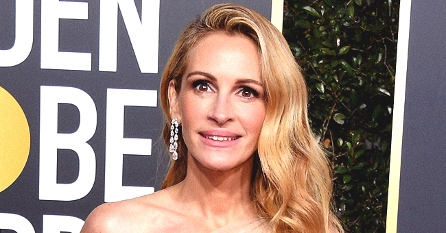 Julia Roberts' Husband Daniel Moder Shares Extremely Rare Photo of Their Kids