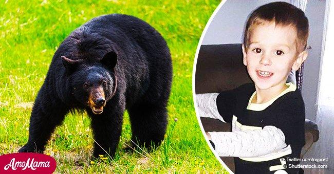 3-jähriger Junge, der 2 Nächte im Wald überlebte, sagt, ein freundlicher Bär schützte ihn