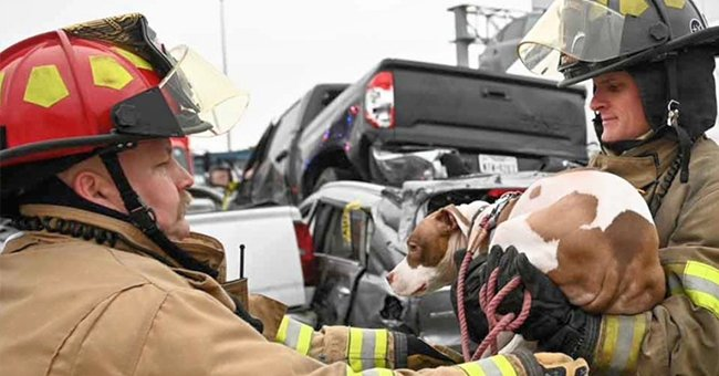 Over 100-Car Pileup Crash Left at Least 5 Victims and Dozens Injured on Texas Interstate