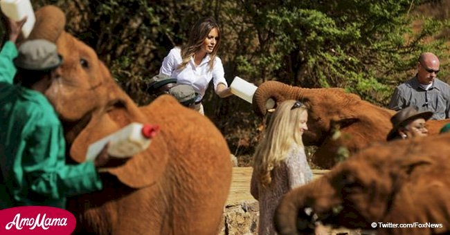 Melania Trump is feeding baby elephants and appears to be living her best life in Kenya