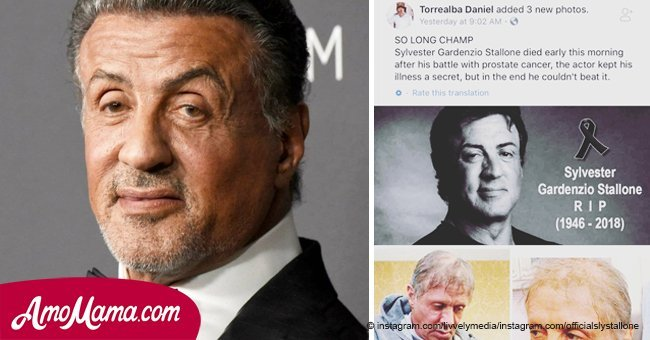 Sylvester Stallone and his brother respond to disgraceful rumor about his health condition