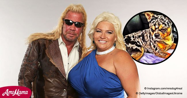 Beth Chapman mourns huge loss in an Instagram post amid cancer battle