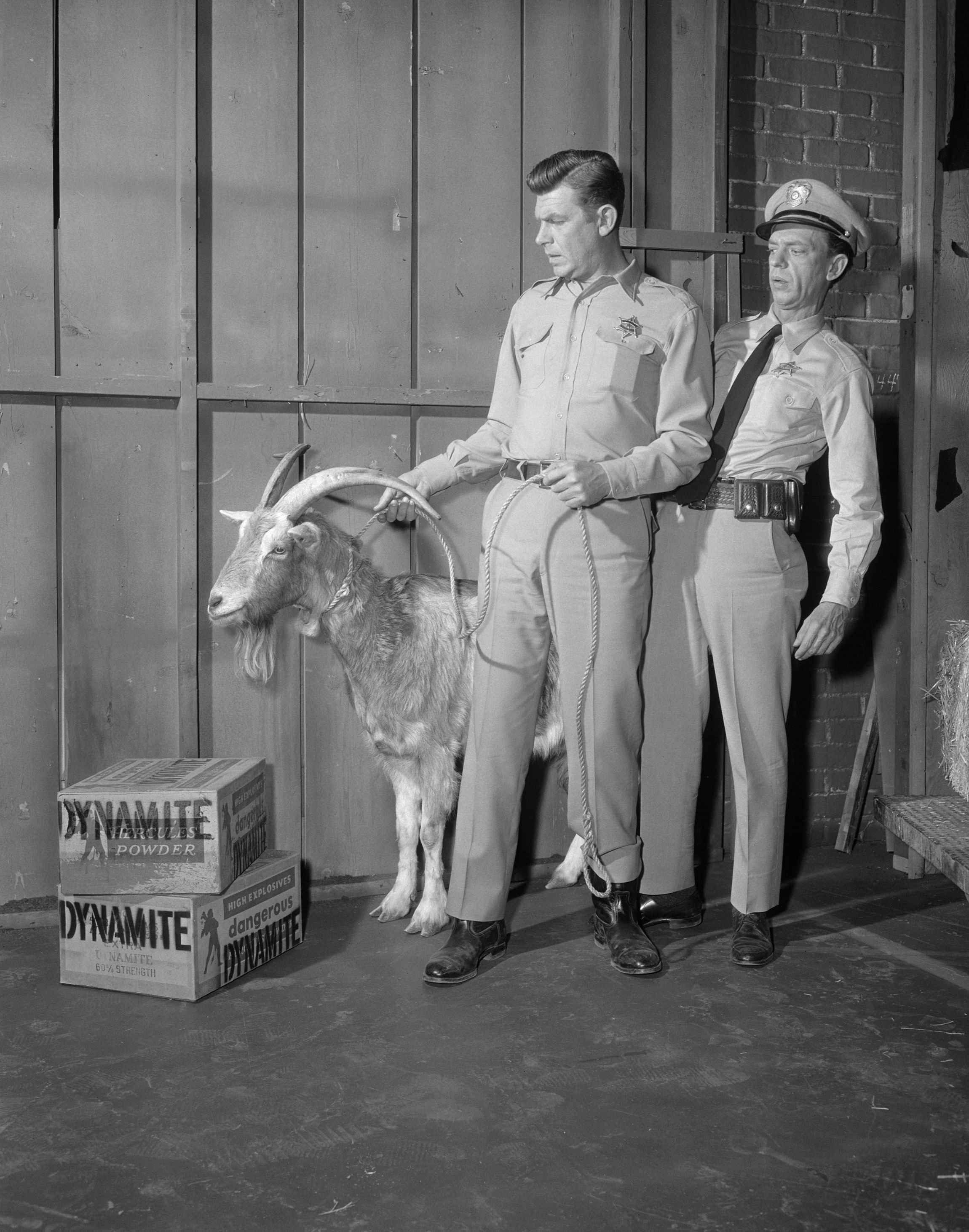 """Jimmythe loaded goat, Andy Griffith,and Don Knottsin episode: """"The Loaded Goat"""" on """"The Andy Griffith Show."""" Image dated December 4, 1962   Photo:CBS/Getty Images"""