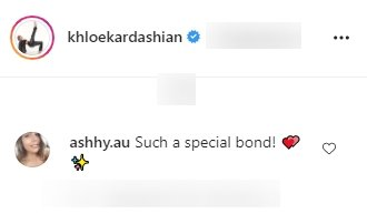 Fan's comment under a picture of Khloé Kardashian and her daughter, True, posted on Instagram | Photo: Instagram/khloekardashian