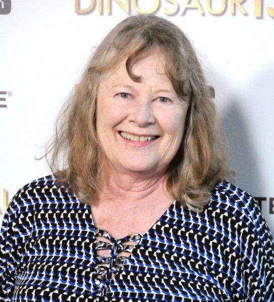 Shirley Knight at DGA Theater on August 12, 2014 in Los Angeles, California. | Photo: Getty Images