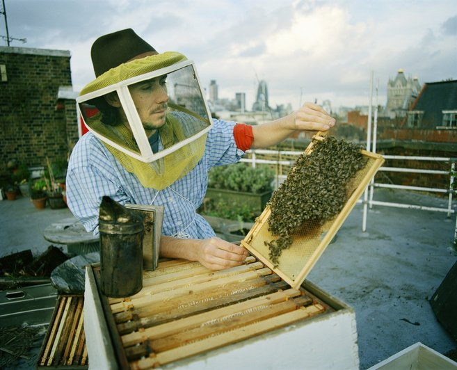 Urban beekeeper with his hive on a rooftop | Photo: Getty Images