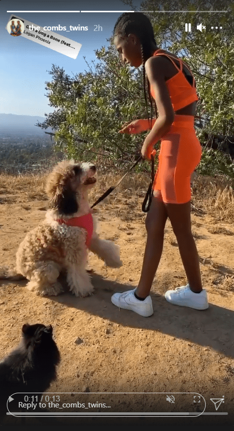 Diddy's beautiful twin daughters, Jessie and D'Lila Combs, and their dog on Instagram | Photo: Instagram.com/the_combs_twins