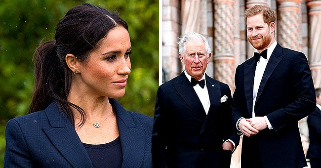 Daily Mail: Harry Is Frustrated as Meghan Forbids Him from Visiting Dad Prince Charles after COVID-19 Diagnosis