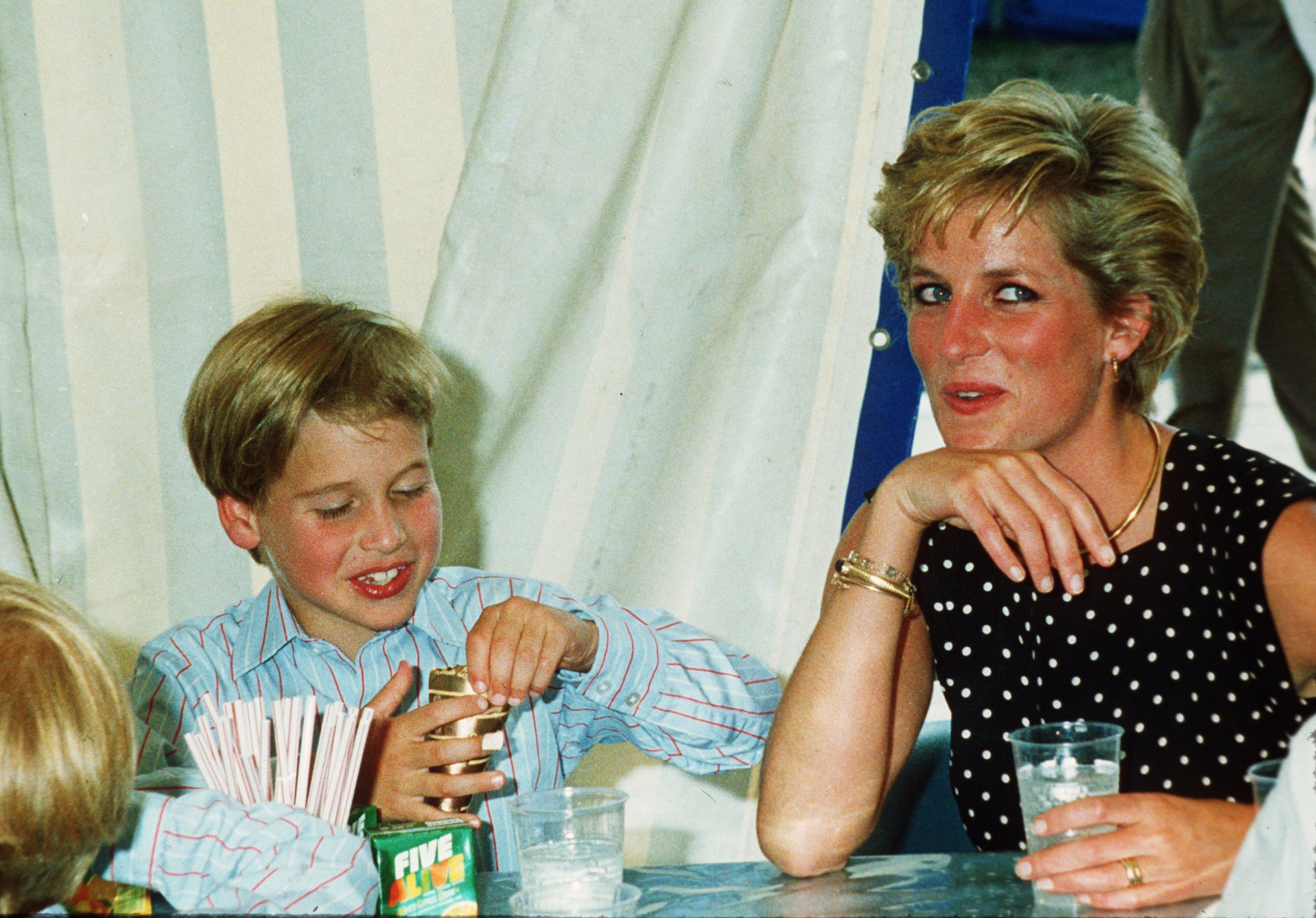 Diana, Princess of Wales and Prince William enjoy some refreshments at Windsor Great Park on June 01, 1991 | Photo: GettyInages