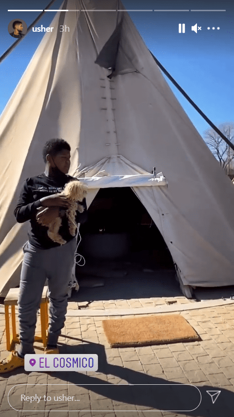 Usher's son Naviyd pictured carrying a puppy while looking away.   Photo: Instagram/Usher