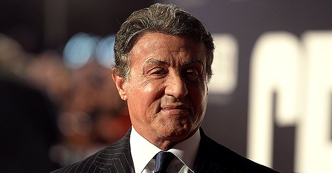 Sylvester Stallone Reportedly Cleaned Lion Cages at a Zoo before Becoming Famous