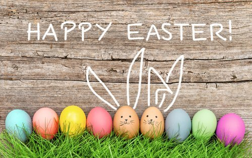 Easter eggs and cute bunny in green grass. | Source: Shutterstock