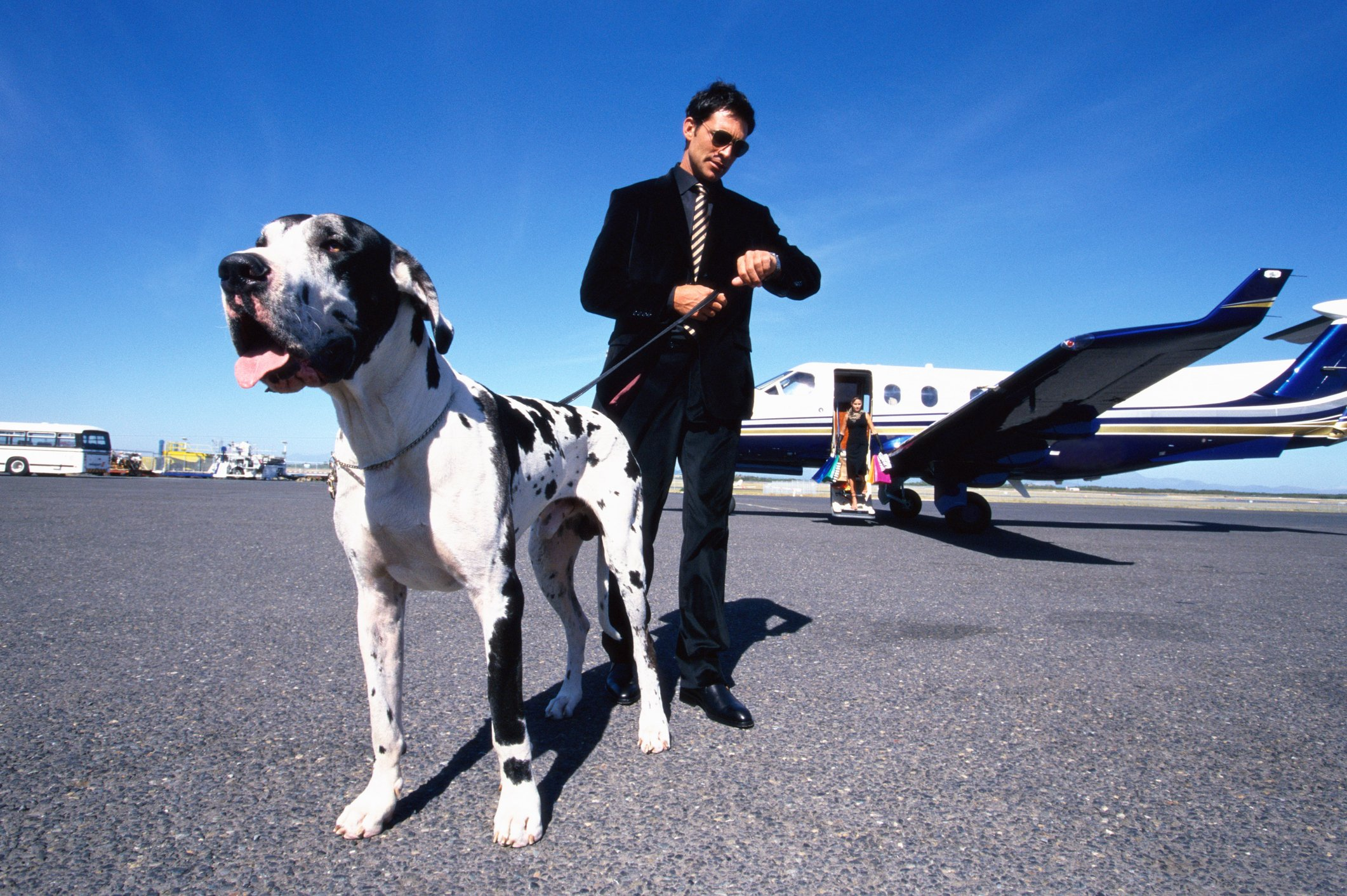 Man in black suit holding his dog after alighting a plane.   Photo: Getty Images