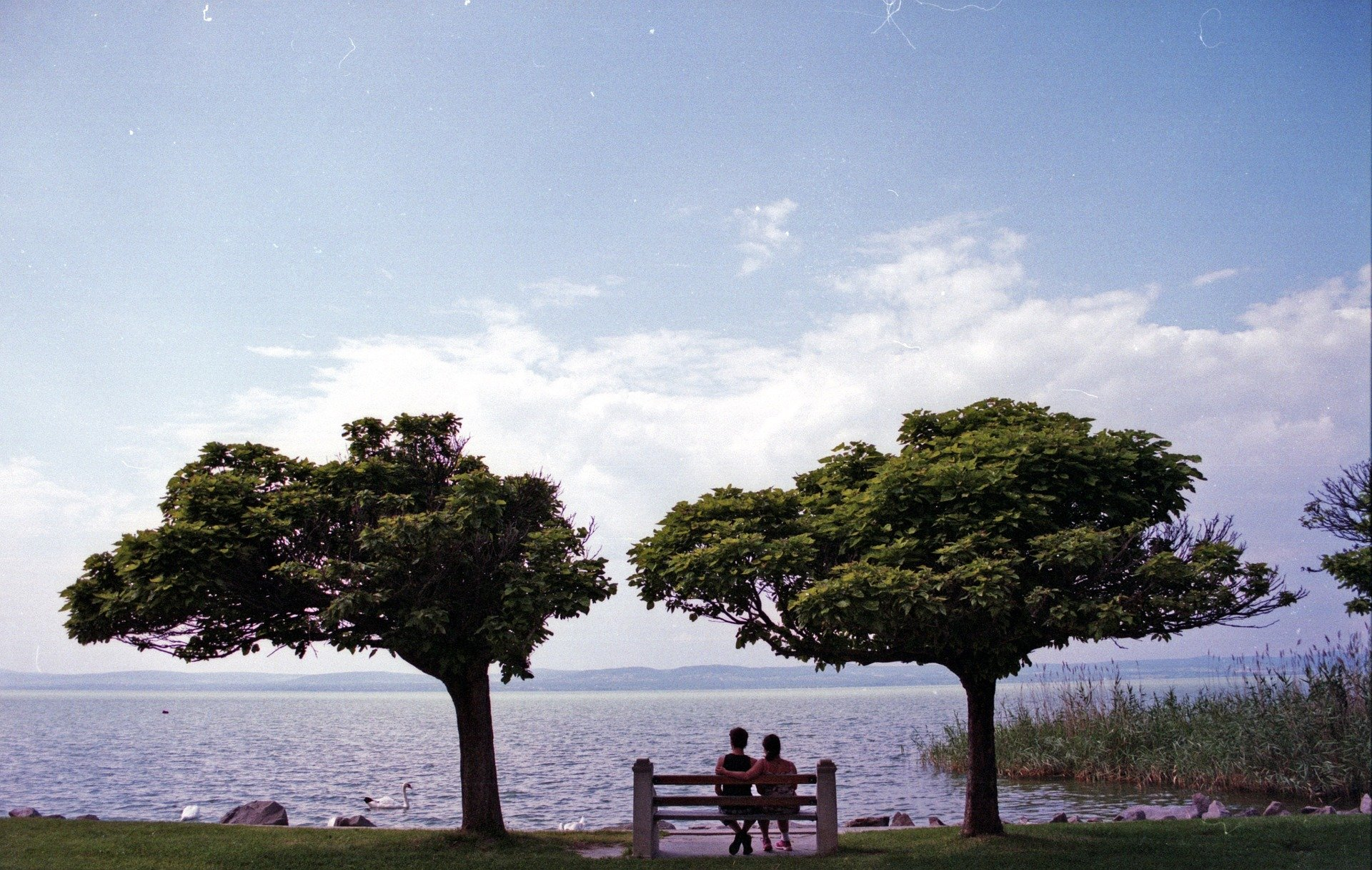A couple sitting on a bench and looking out into the ocean   Source: Pixabay