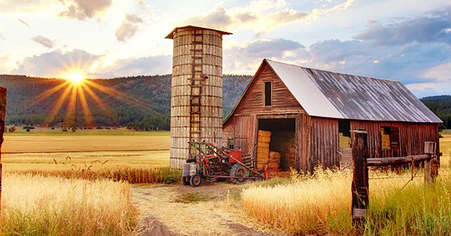 Three Funny Jokes about Living the Farm Life