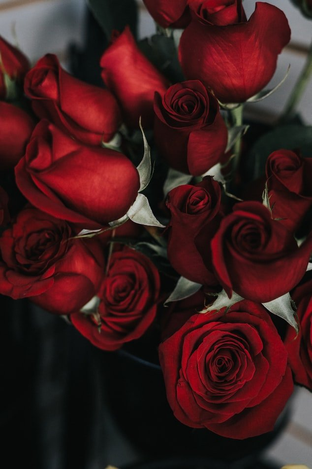 I sent her 100 red roses and an anonymous invitation to dinner | Source: Unsplash