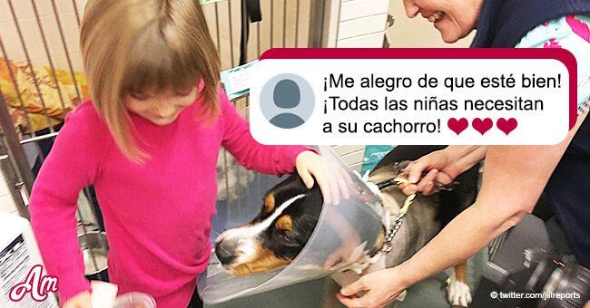 Niña finalmente se reúne con su adorado perro tras donante pagar por cirugía que le salvó la vida