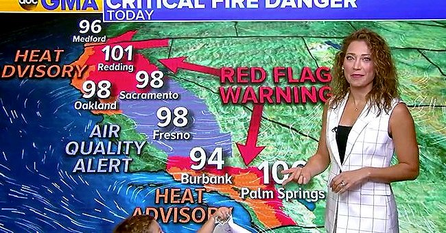 Watch ABC News Meteorologist Ginger Zee Adorably Interrupted by Her Son during Weather Forecast