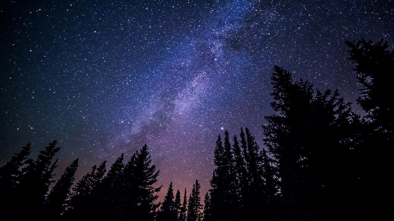 A starry sky at night from a forest. I Image: Pixabay.