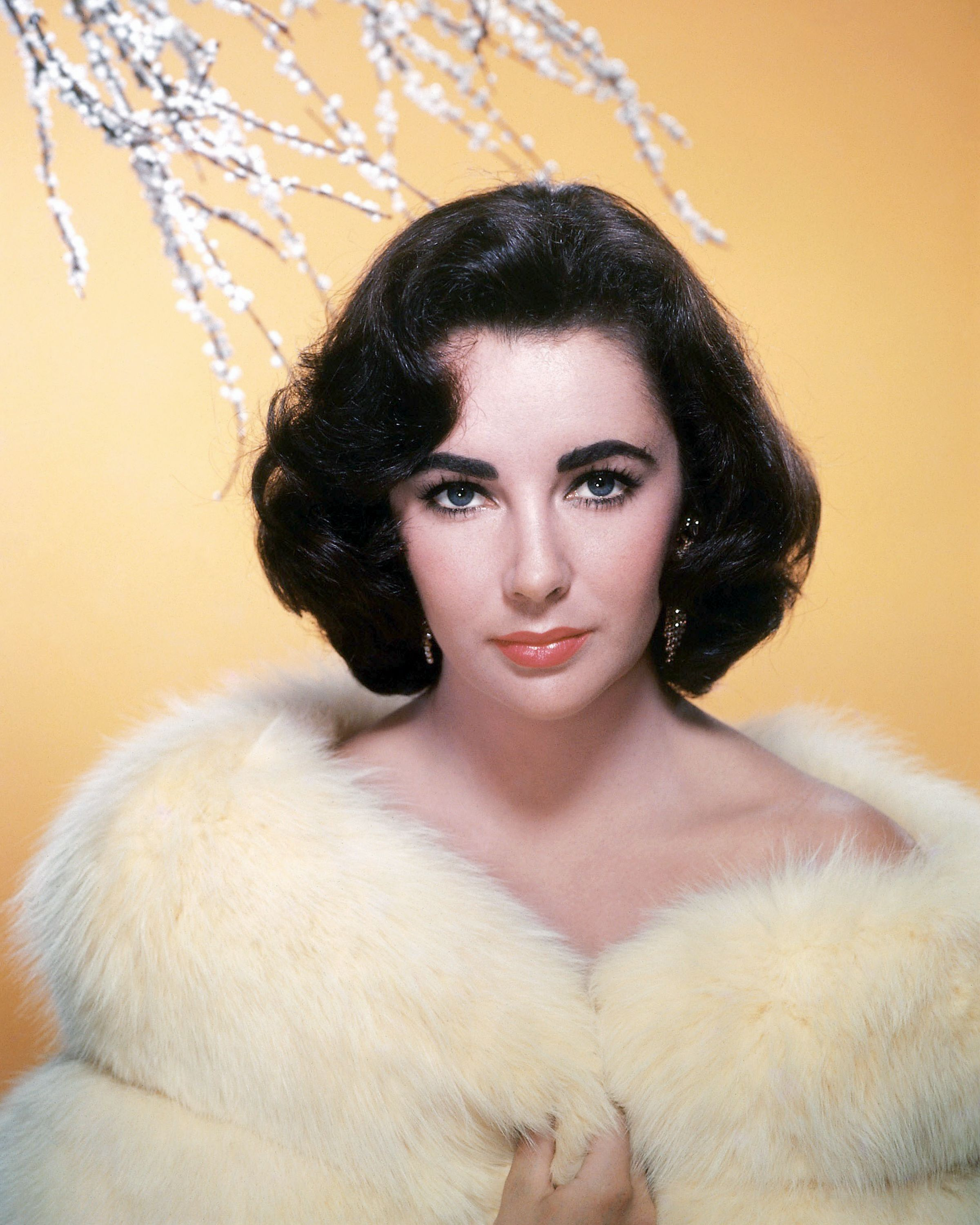 British-born American actress Elizabeth Taylor (1932 - 2011) in a white fur coat, circa 1955. (Photo by Silver Screen Collection/Getty Images