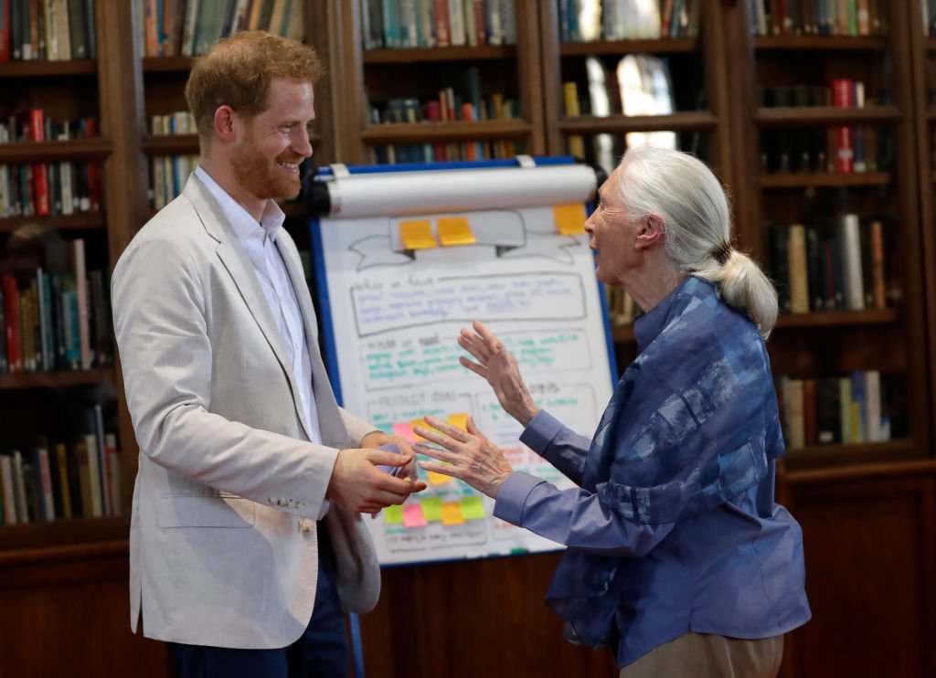 Prince Harry, Duke of Sussex and Dr Jane Goodall hug as he attends Dr. Jane Goodall's Roots & Shoots Global Leadership Meeting at Windsor Castle | Photo: Getty Images