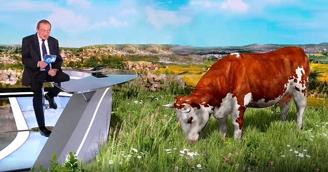 Cet agriculteur s'est vu infliger une amende de 8 000 euros à cause du bruit de ses vaches