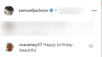 A fan's comment on a post for Cookie Johnson made by Samuel L. Jackson on Instagram   Photo: Instagram/samuelljackson