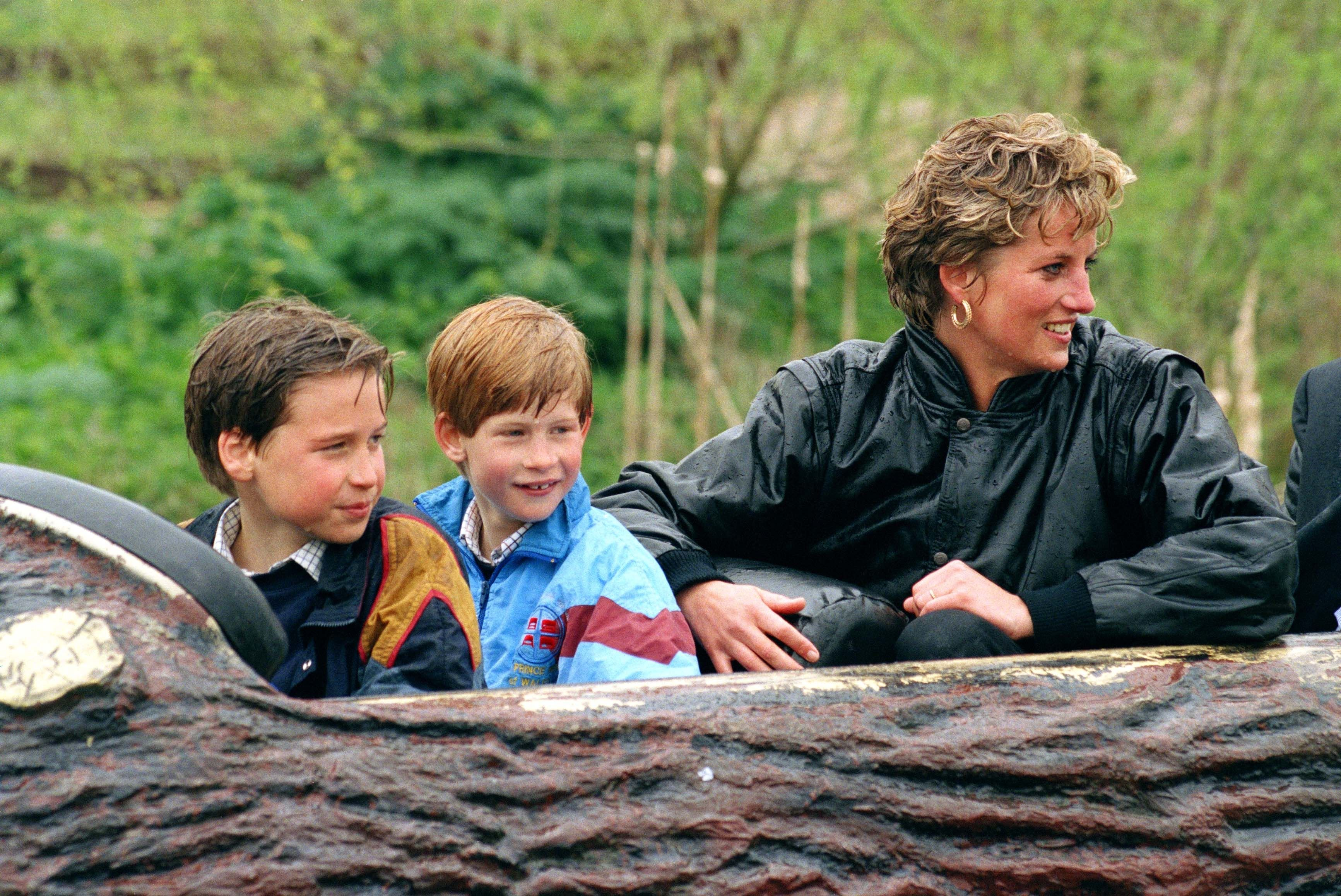 Diana Princess and sons Prince William and Prince Harry at The 'Thorpe Park' Amusement Park   Photo: Getty Images
