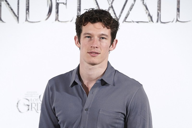 Callum Turner on November 16, 2018 in Madrid, Spain | Photo: Getty Images