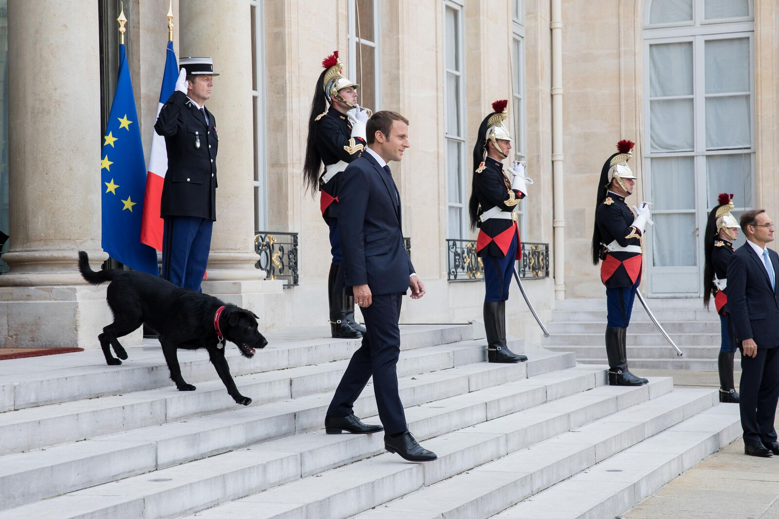 Emmanuel Macron avec son chien Nemo |Source: Getty Images/Global Images Ukraine