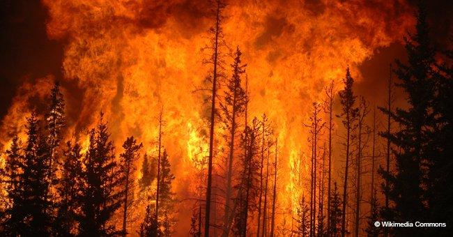 En Corse : près de 1.500 hectares couverts par les flammes