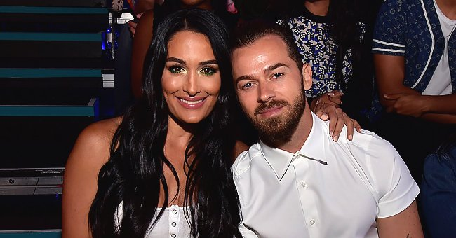 Pregnant Nikki Bella Calls Fiancé Artem Chigvintsev Light of Her Life in a Sweet Birthday Wish