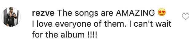 Fan's comment on Céline Dion's post. | Instagram/celinedion