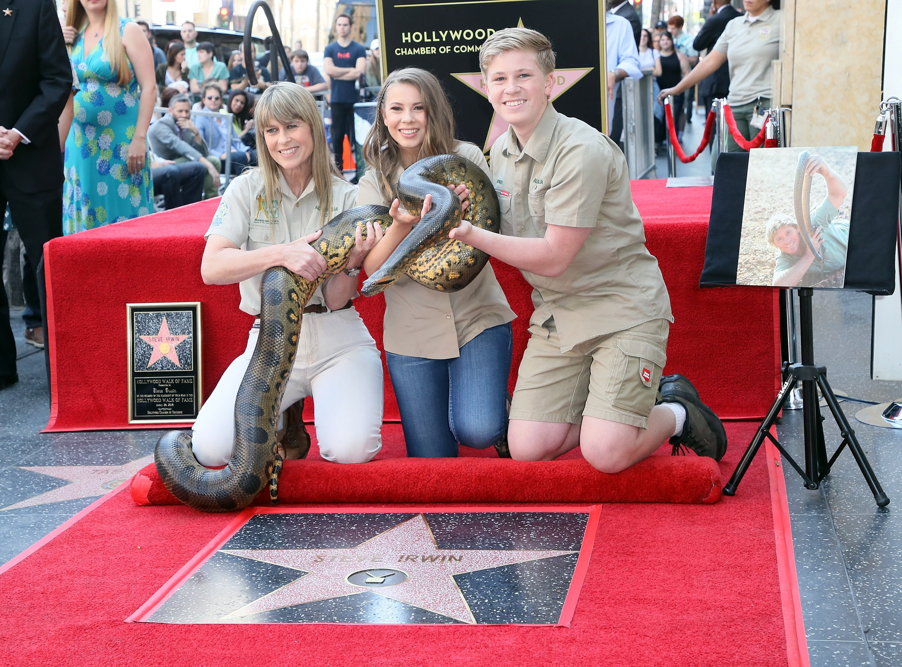 Terri Irwin, Bindi Irwin and Robert Irwin celebrating Steve Irwin being honored posthumously with a Star on the Hollywood Walk of Fame in Hollywood, California   Photo: David Livingston/Getty Images