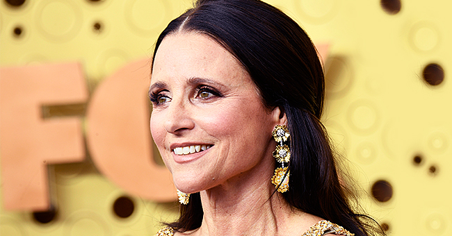 Julia Louis-Dreyfus of 'Seinfeld' Is a Loving Wife and Mother — Meet Her Family