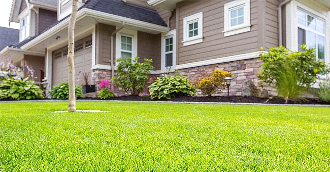 Daily Joke: Wealthy Man Sees People Eating Grass and Brings Them to His House