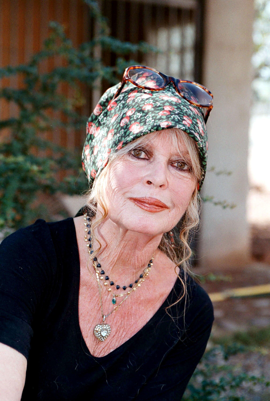 L'actrice Brigitte Bardot. l Source: Getty Images